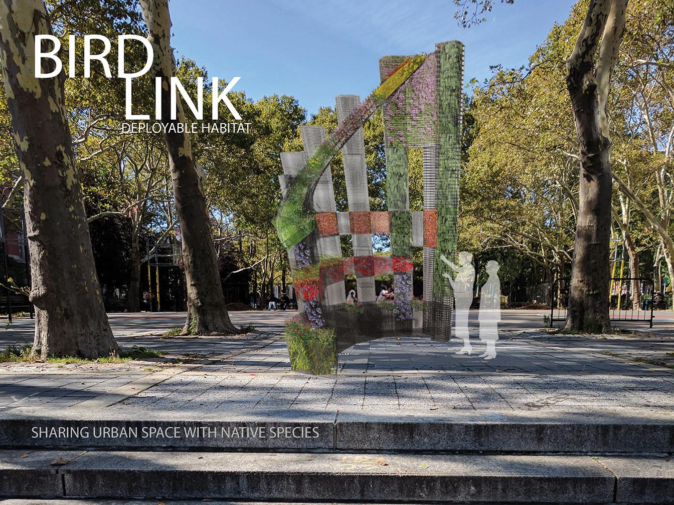 BIRDLINK native plant garden constructed habitat Sara D. Roosevelt Park 2018