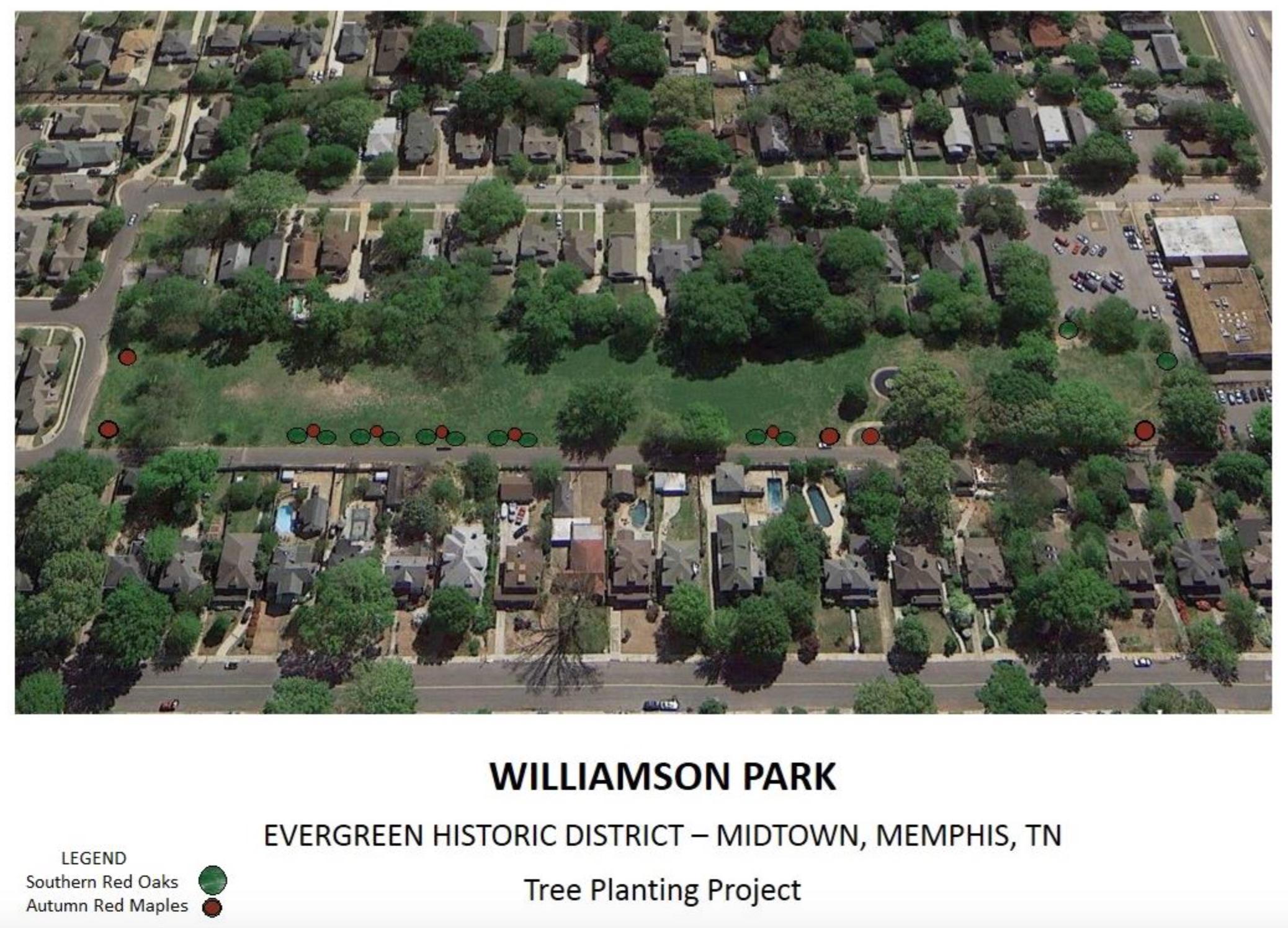 Williamson Park Tree Planting Plan