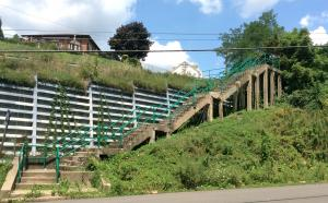 "The Stanton Heights Steps -- ""before"" image."