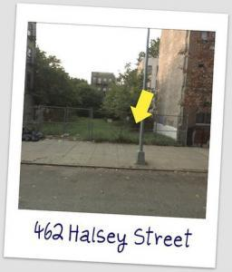 the project - Halsey Garden