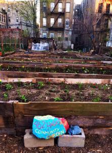 462 halsey community garden - Halsey Garden