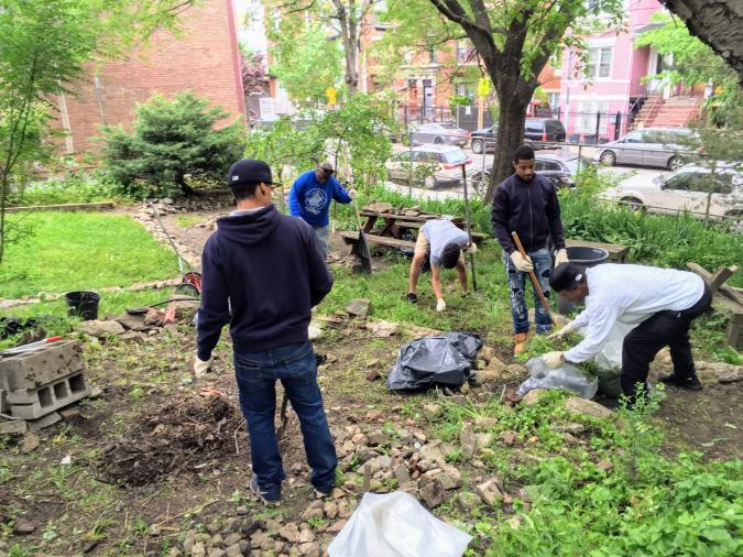 Bryant Hill Community Garden and Sustainable South Bronx | ioby