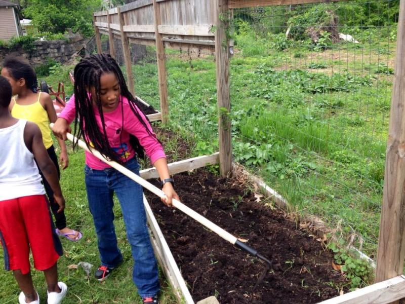 Carpenter Art Garden Summer Programs | ioby